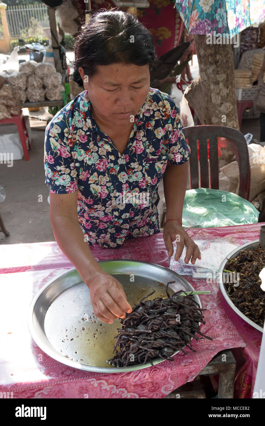 Woman frying tarantula spiders at a roadside stall in Cambodia - Stock Image