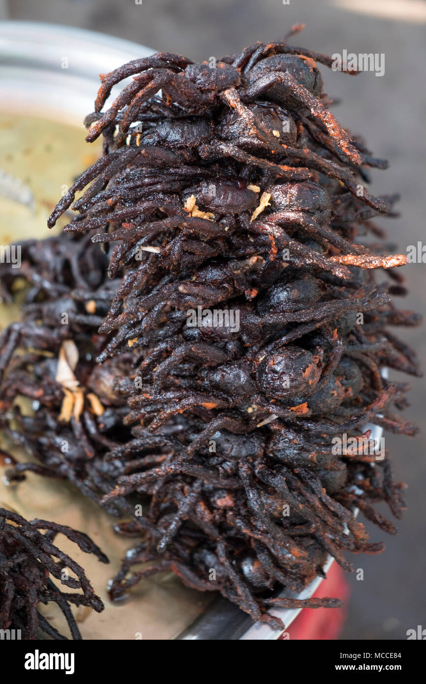 Fried spiders for sale at roadside stalls in Cambodia - Stock Image