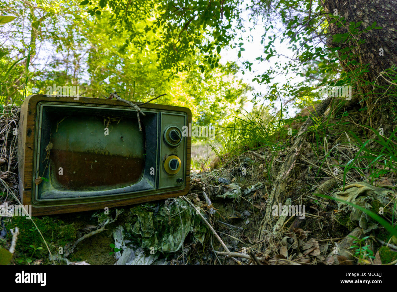 tv became one with nature - Stock Image