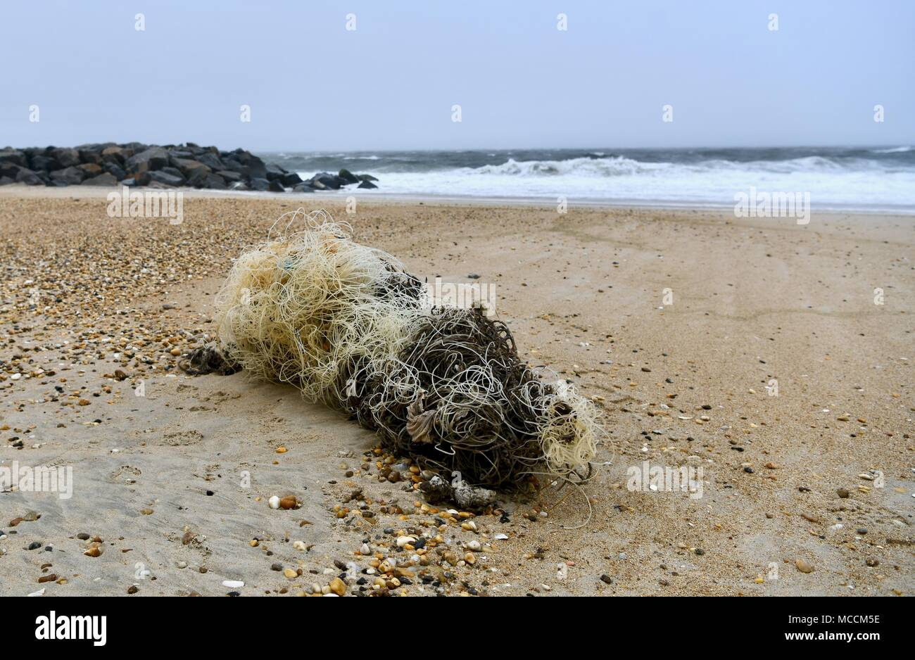 Large pile of tangled fishing line washed up on the shore of a remote beach at Cape Henlopen State Park, Delaware, USA - Stock Image
