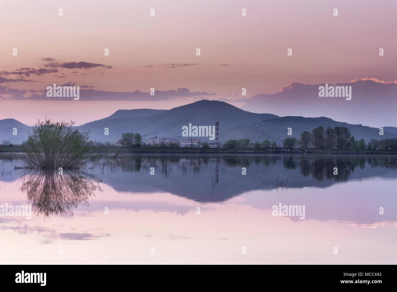 Distant mountain and city blue hour lake mirror reflection with purple sky and foreground bush - Stock Image