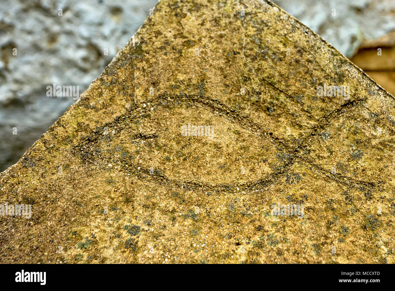 Ichthus fish symbol stock photos ichthus fish symbol stock images ichthus christian symbol in stone stock image biocorpaavc Image collections