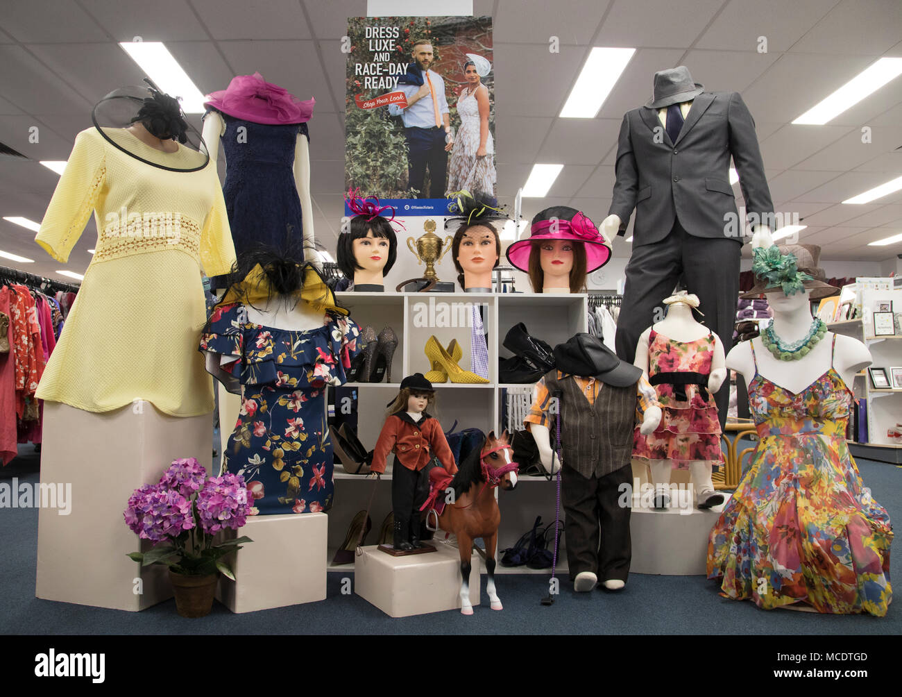 Melbourne Cup Display, Vinnies Stores, Australia - Stock Image