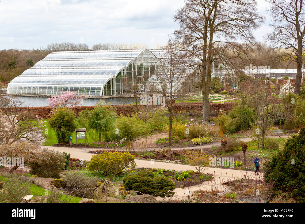 The Glasshouse at RHS Wisley Stock Photo: 179804660 - Alamy