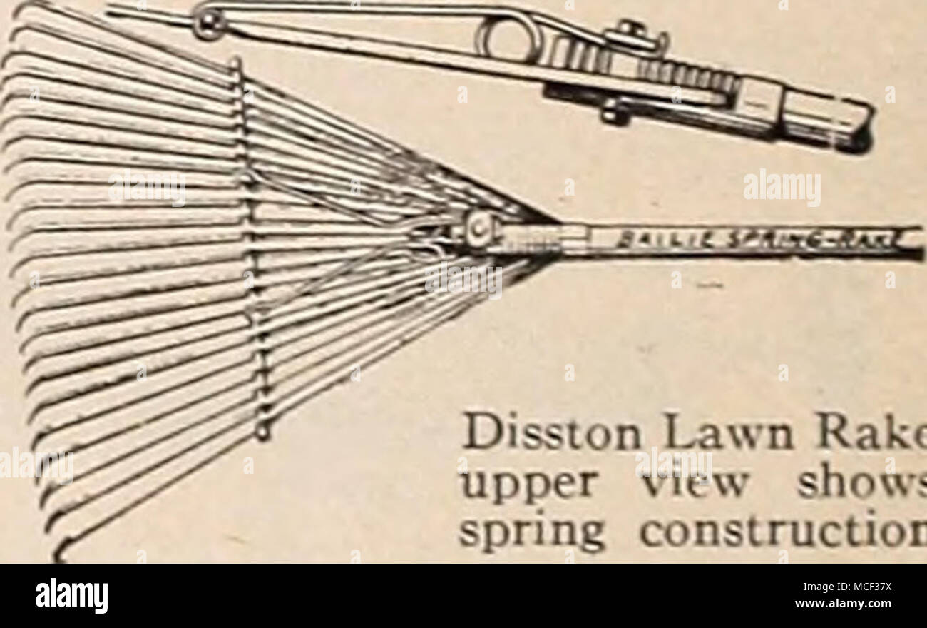 Disston Lawn Rake upper view shows spring construction