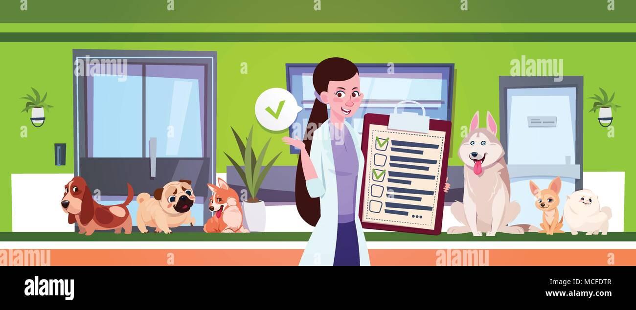 Female Veterinarian Over Dogs Sitting In Waiting Room In Vet Clinic Office Flat Vector Illustration - Stock Vector
