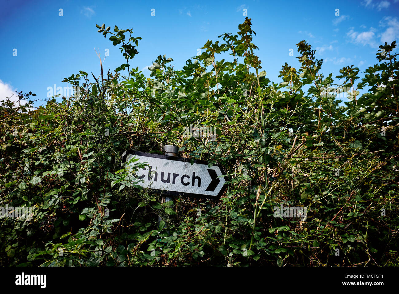 A church signpost lost in an overgrown country hedge. - Stock Image
