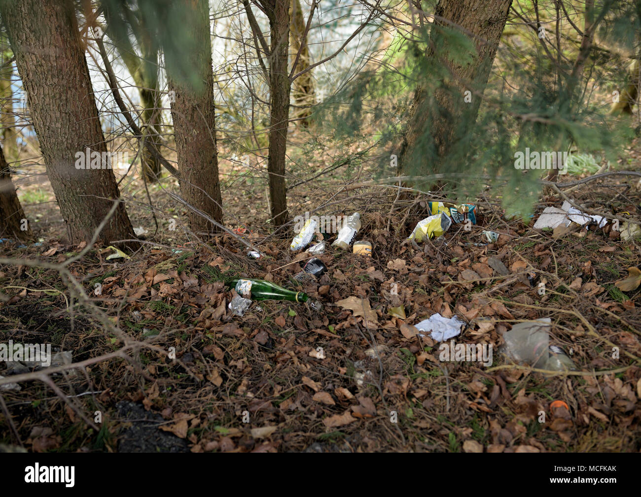 Plastic bags and plastic bottles and rubbish thrown away and dumped in woodland in bury lancashire - Stock Image