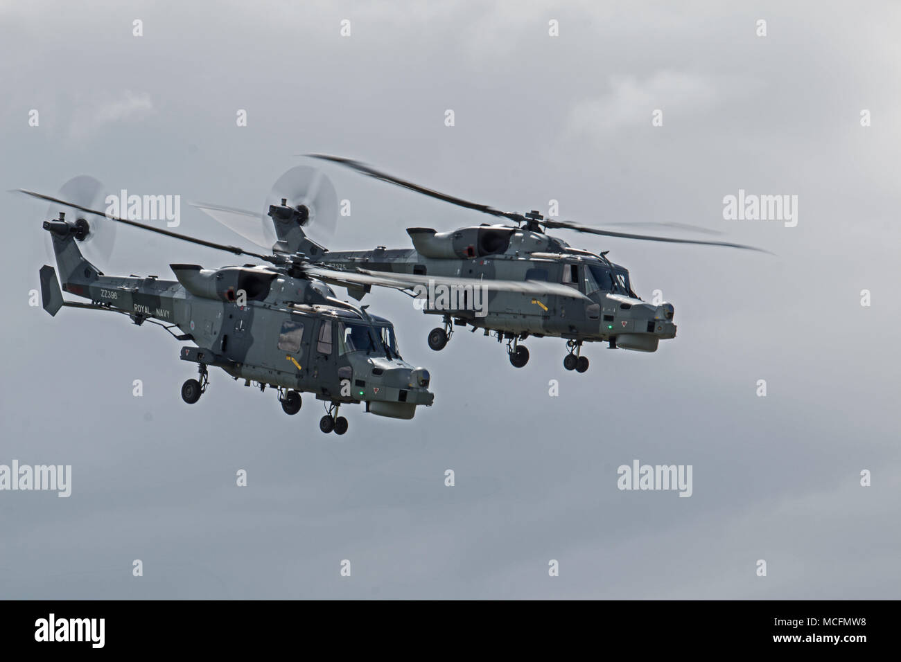 A pair of AgustaWestland Wildcat HMA Mk 2s from 825 NAS are currenlty being flown by the Royal Navys Black Cats Aerobatic Display Team Stock Photo