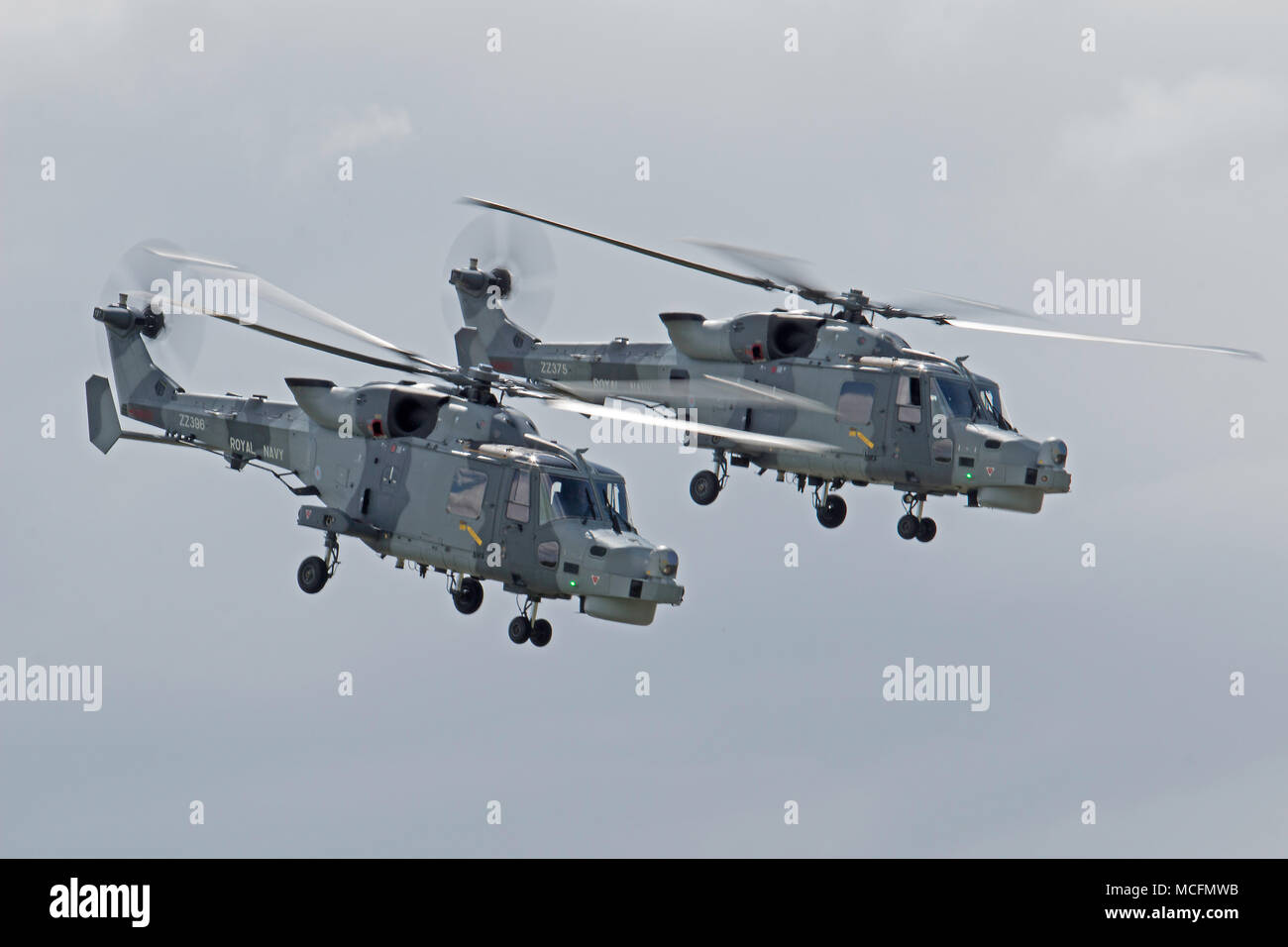 825 NAs and 815 NAS with the latter operating a mix of Wildcat HMA 2 and the outgoing Lynx HMA 8 helicopters. The Royal Navy will be deploying one of  Stock Photo
