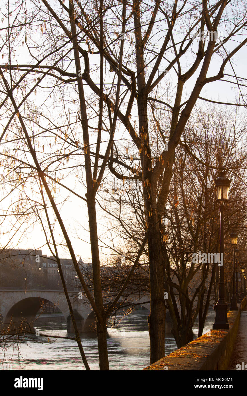 An early morning view of the Seine and the Pont Marie from the Il St Louis, Paris, France, Europe - Stock Image