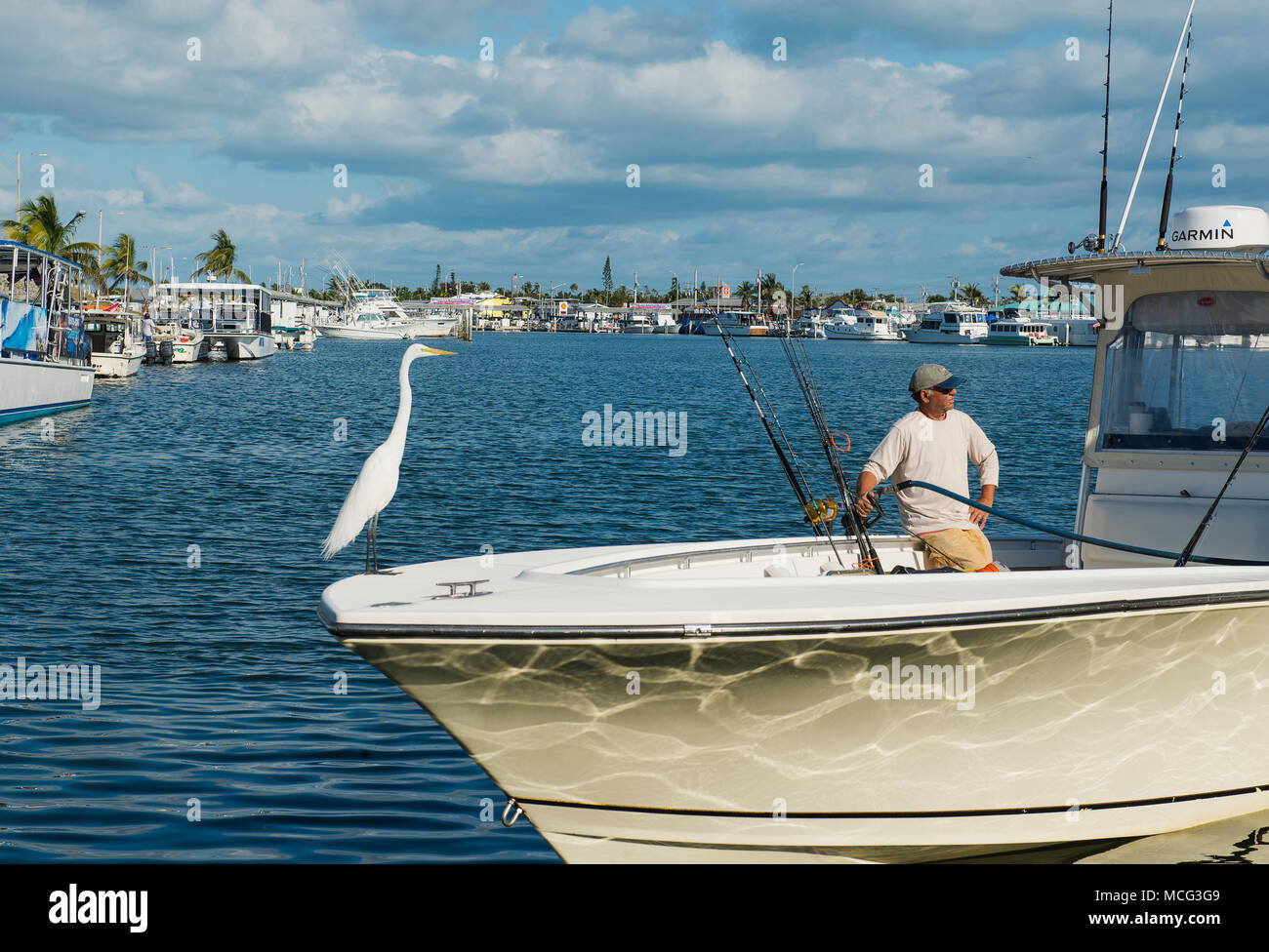 An egret sitting on a man's boat while he fills the fuel tank. Stock Photo