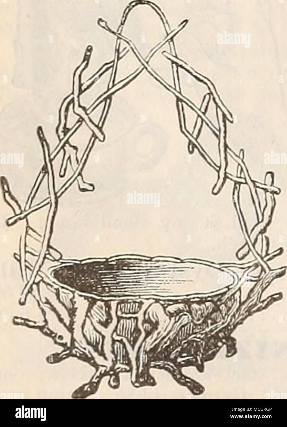 """. Rustic Hanging-Baskets. Round Bowl— No. 2 8 inch $1.00 """"3 9 """" .... 1.50 """"4 10 """" .... 2.00 Oval Bowl— No. 1 10 inch....§1.00 """"2 11 """" .... 1.25 """" 4.... 13 """" .... 2.00 Also, Rustic Settees, Arm Chairs, Lawn Vases and Stump Boxes. - Stock Image"""