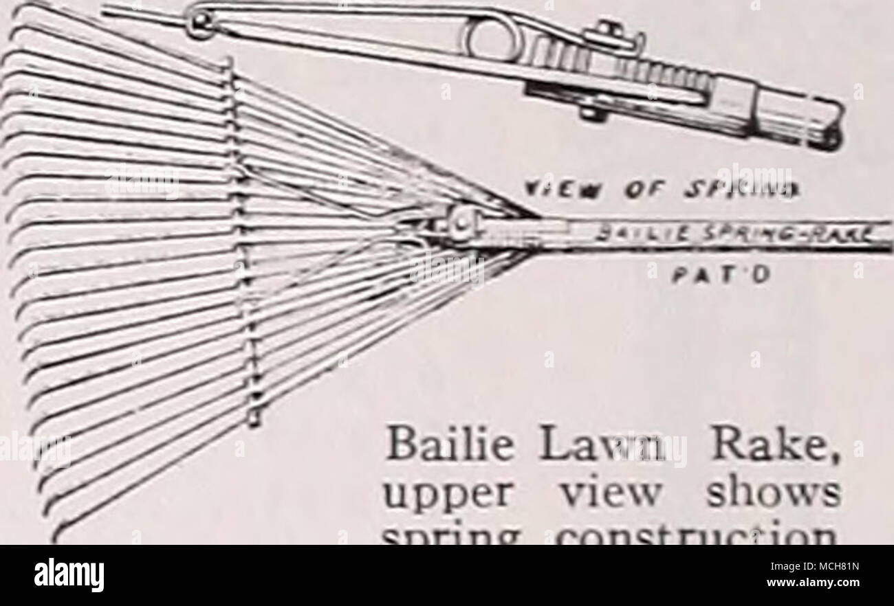 . Bailie Lawn Rake, upper view shows spring construction Bamboo Broom Rake. Will sweep the lawn of even the finer particles. Very light in weight, fitted with polished hardwood handles, 18-inch head 75c; 24-inch head $1.00. DEPUE 'UPERBIL The Depue Superbilt Rake is without ques- tion the finest wood lawn rake ever offered. The head of the tool and the handle are of straight grained ash, the 28 teeth of hickory. The handle and the steel supporting arms are bolted solidly into the head. S2.00. - Stock Image