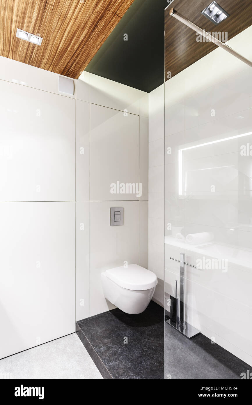 Simple bathroom interior with white walls, toilet seat and shower cubicle Stock Photo