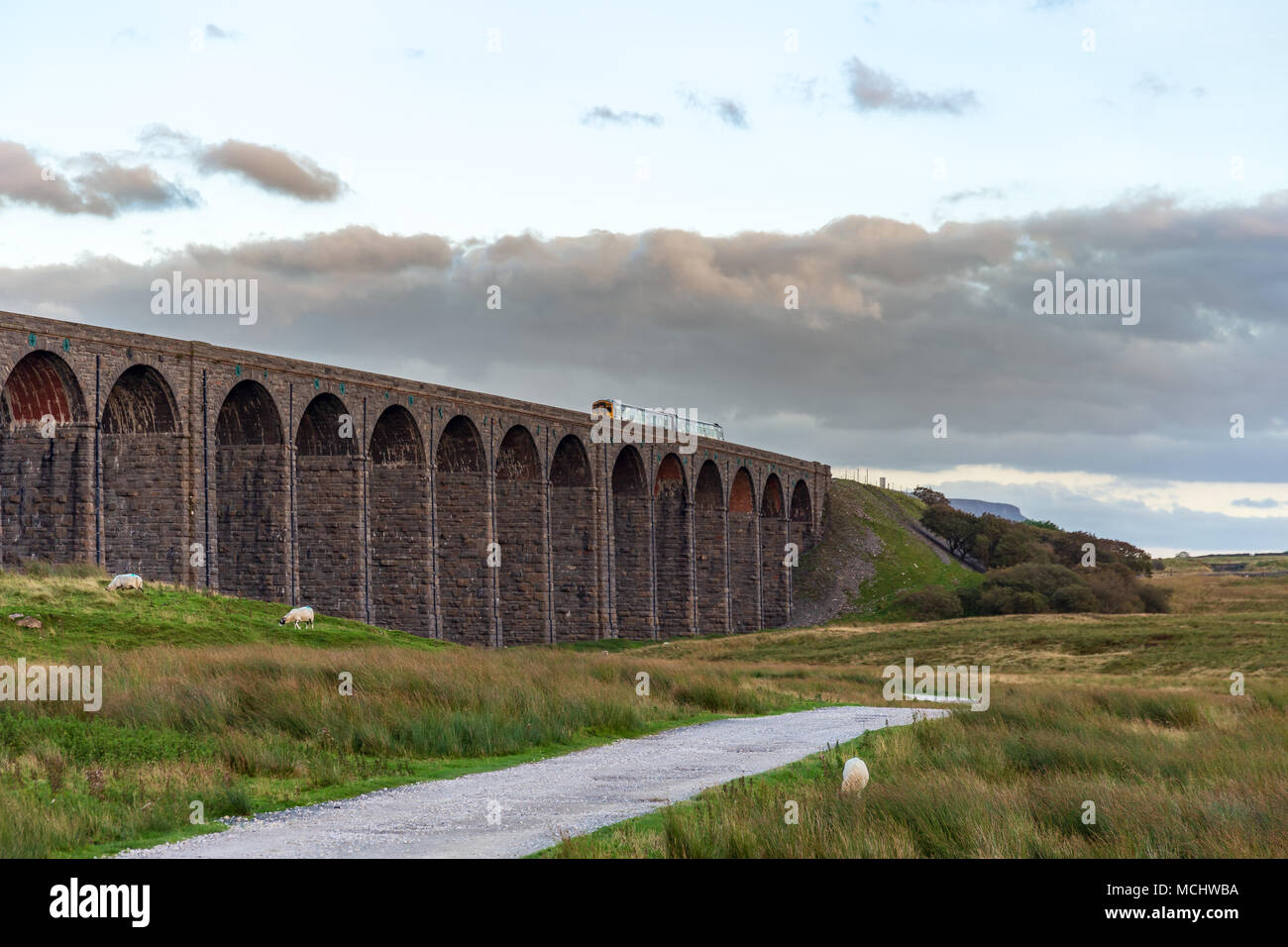 Near Ingleton, North Yorkshire, England, UK - September 11, 2016: A train passing the Ribblehead Viaduct on the Settle-Carlisle Railway - Stock Image