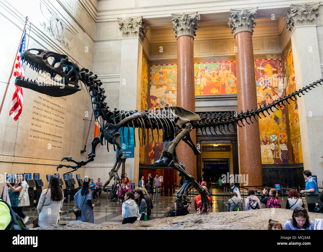 New York City Museum of Natural Sciences Dinosaur Fossils - Stock Image
