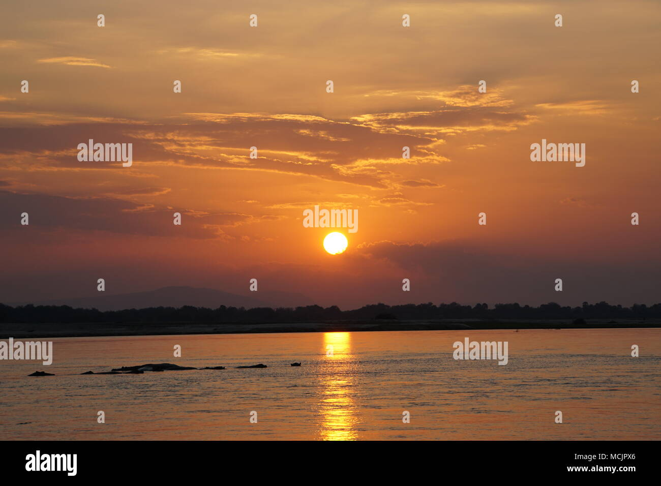 Beautiful Sunset during Safari at a river in Tanzania / Africa - Stock Image