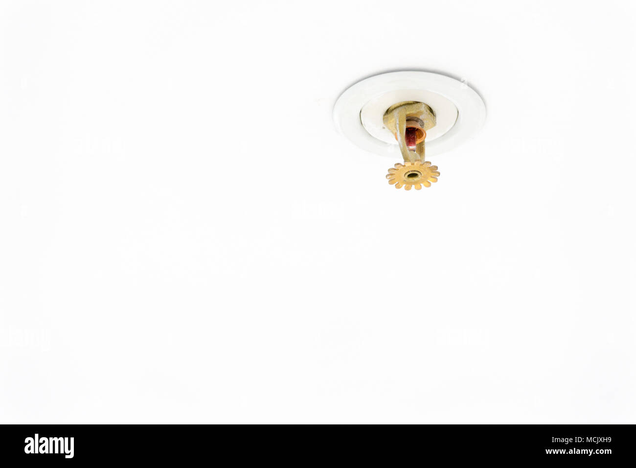 Close up image of fire sprinkler on white. Fire sprinklers are part of an integrated water piping system designed for life and fire safety. Automatic - Stock Image