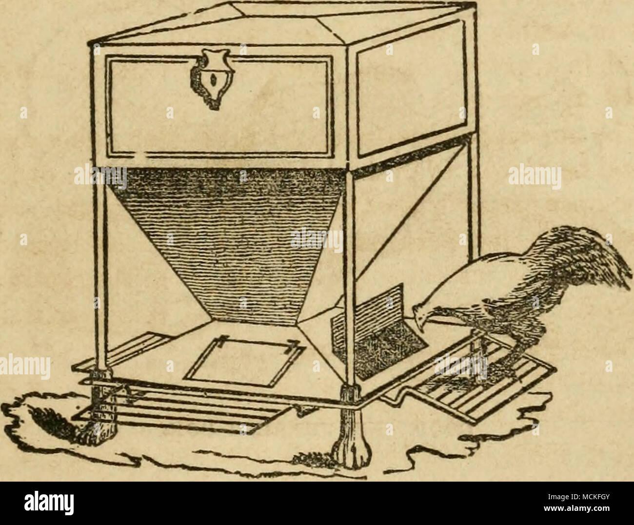 . FEEDING-BOX. - Stock Image
