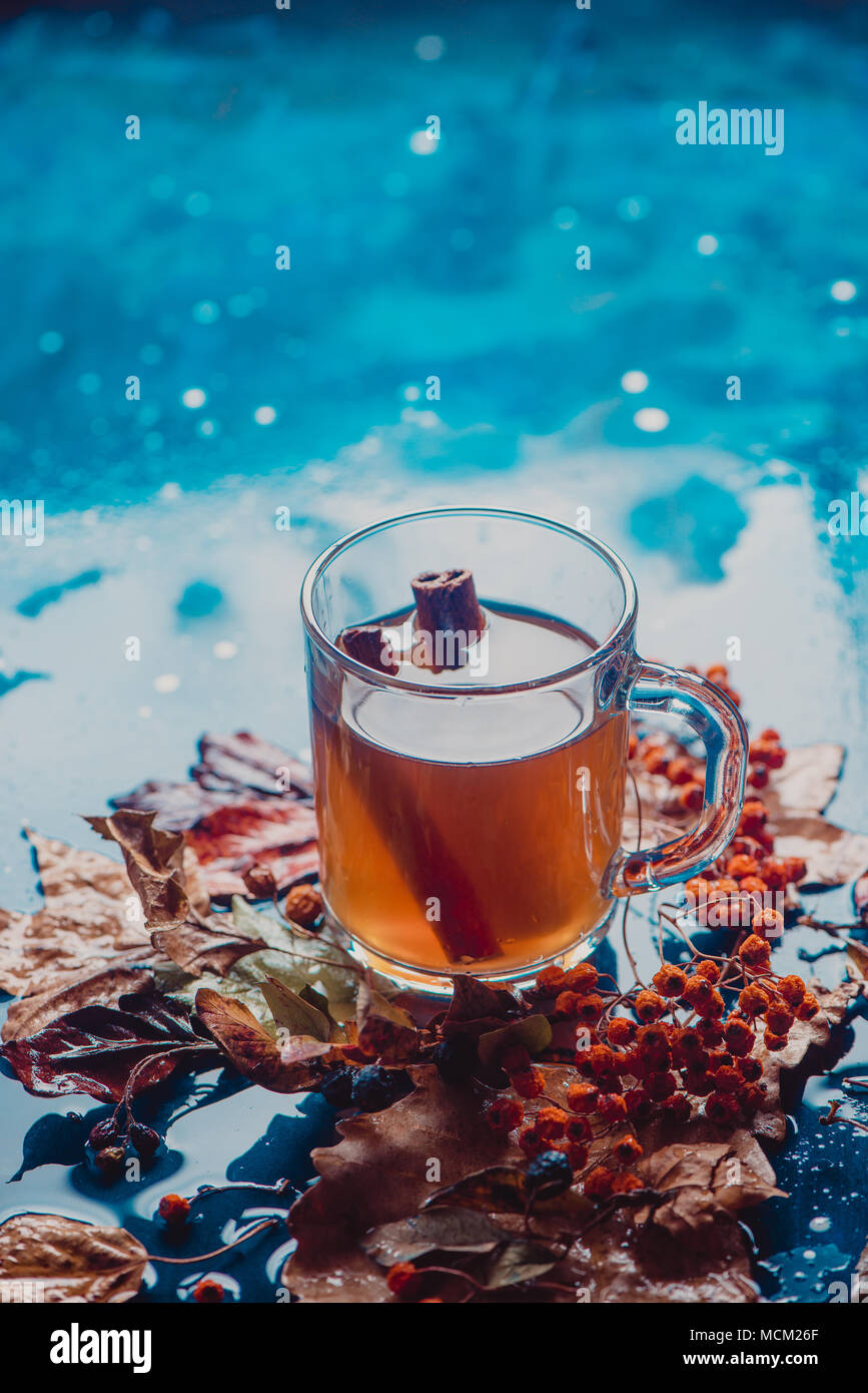Tea with cinnamon in an autumn still life with fallen leaves and ash berry on a wet wooden background. Seasonal concept with copy space. - Stock Image