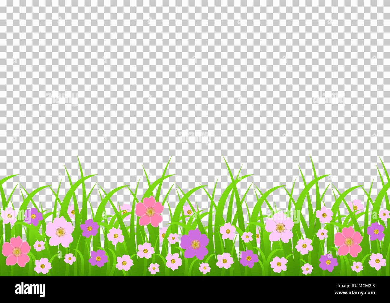 grass border no background real grass flowers and grass border pink meadow flowers green on transparent background vector illustration greeting card decoration element summ
