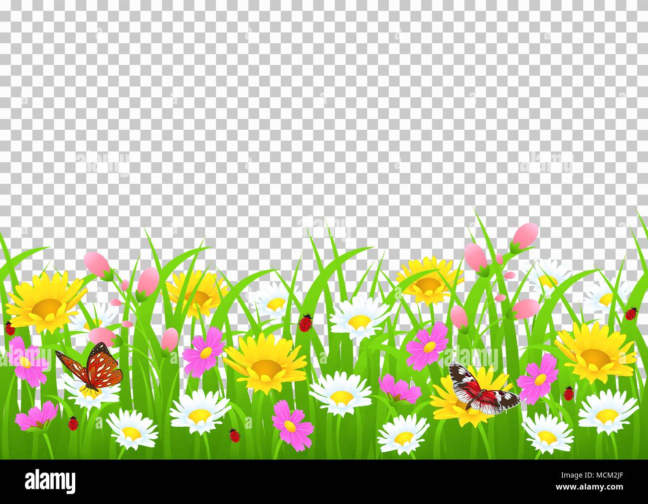 Transparent Border Stock Vector Images - Alamy