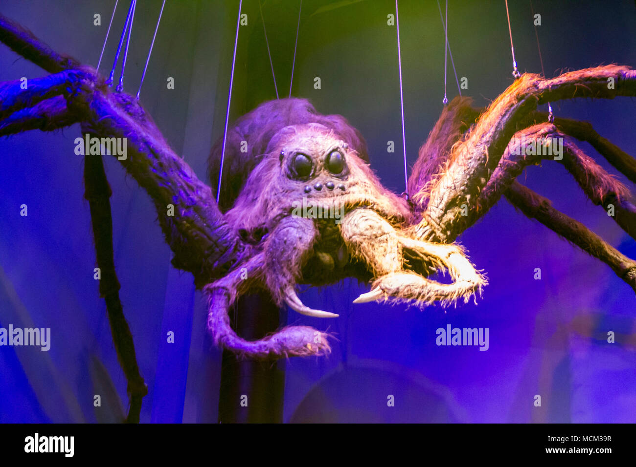 Aragog Giant Spider Harry Potter High Resolution Stock Photography And Images Alamy