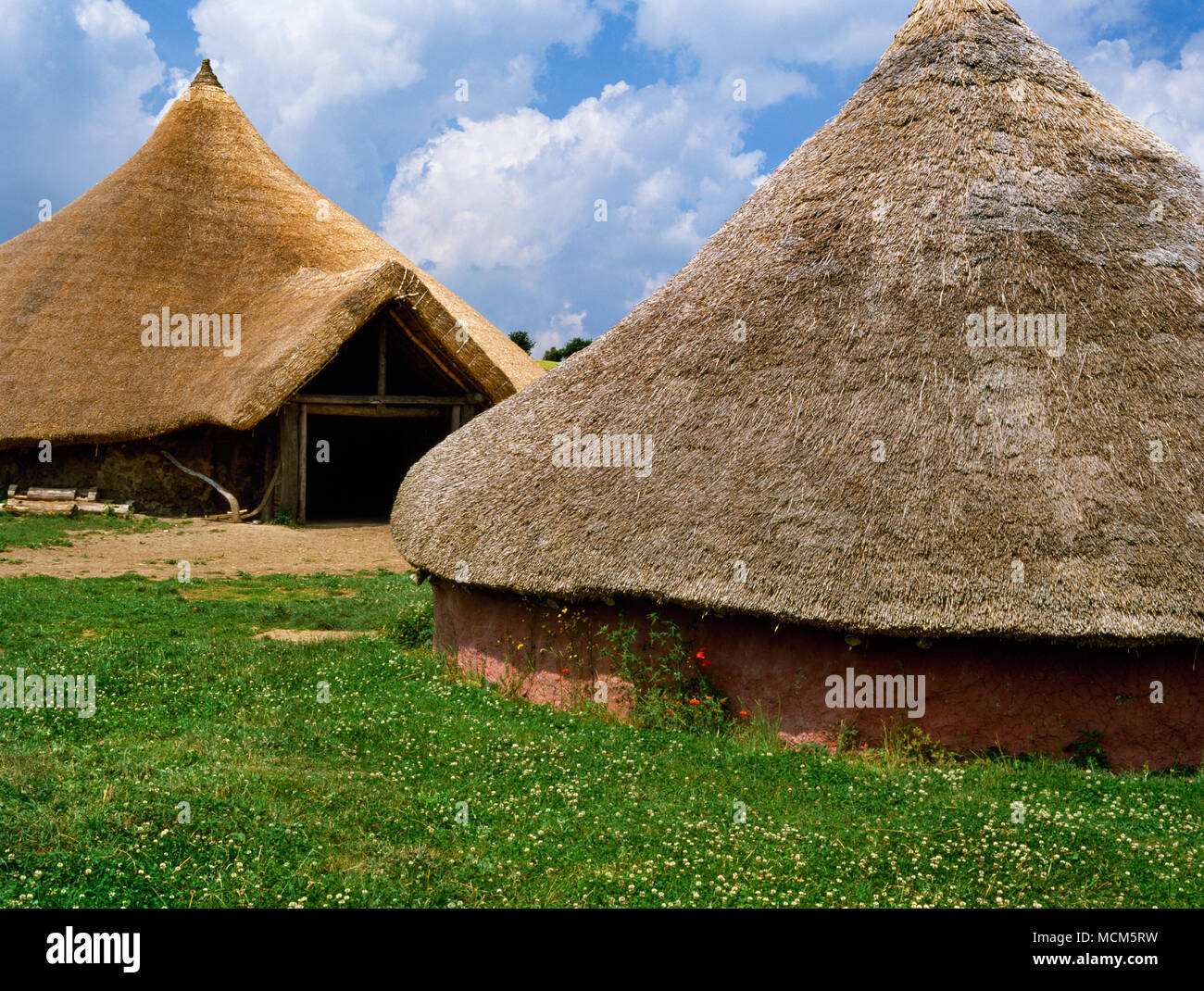 The Great Roundhouse (rear L) & the Moel y Gaer house at Butser Ancient Farm, Hampshire, UK. Archaeological reconstructions based on excavations. - Stock Image