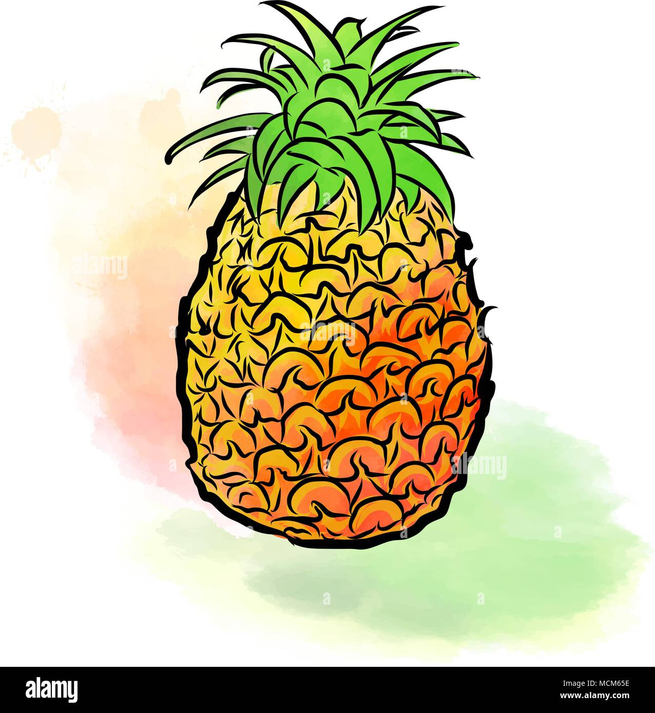 Colored drawing of pineapple fresh design of colorful - Ananas dessin ...