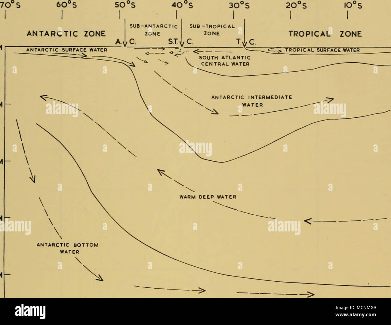 antarctic bottom water text-fig  14  diagram indicating the circulation  of water approximately along the meridian of 30° w  the arrows indicate the