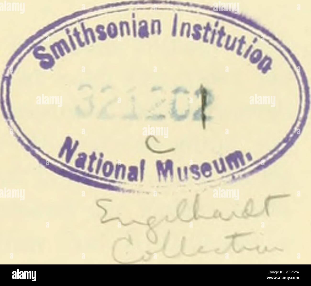 . STUTTGART 1908 E. SCHWEIZERBARTSCHE VERLAGSBUCHHANDLUNG (E. NÄGELE) - Stock Image