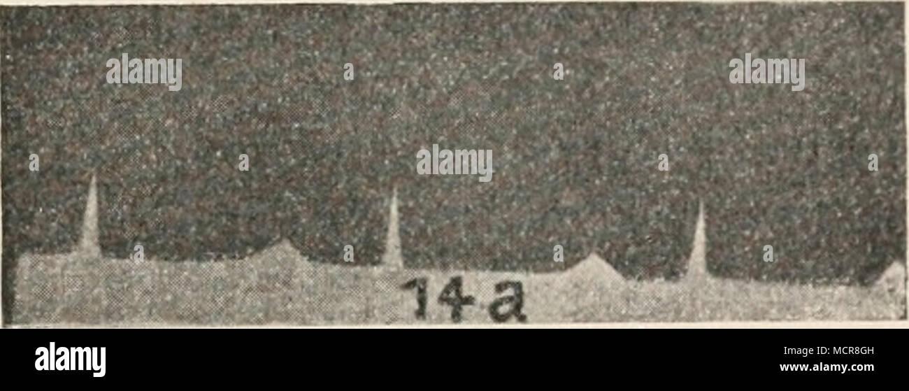 Vor Ein Stock Photos & Vor Ein Stock Images - Page 15 - Alamy