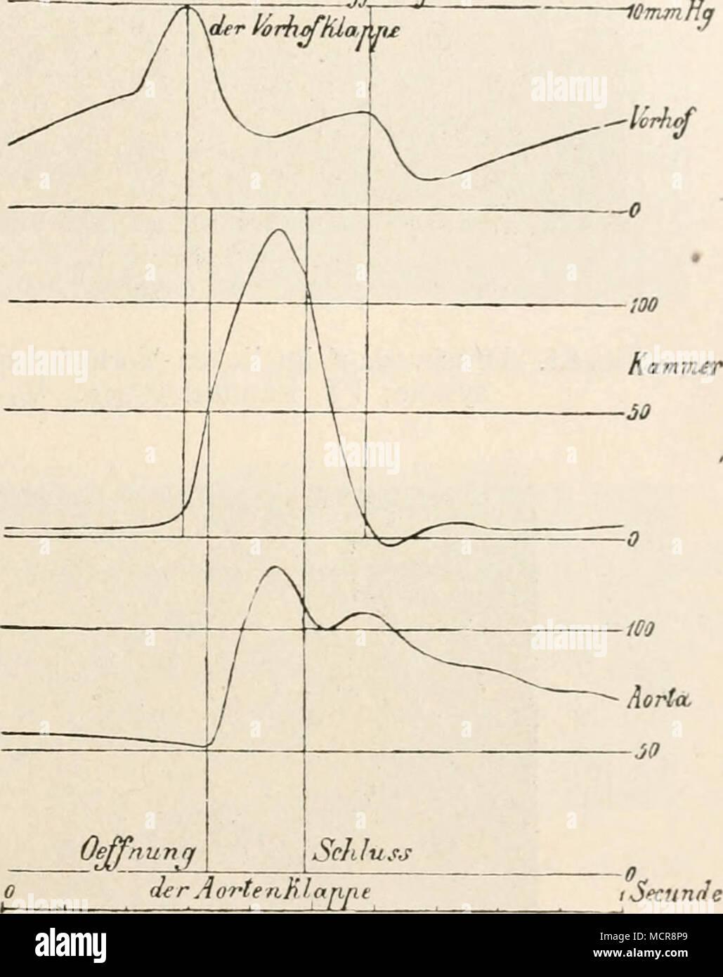 iSecunife Fig. 80. Schematische Darstellung des Druckablaufes in dem ...