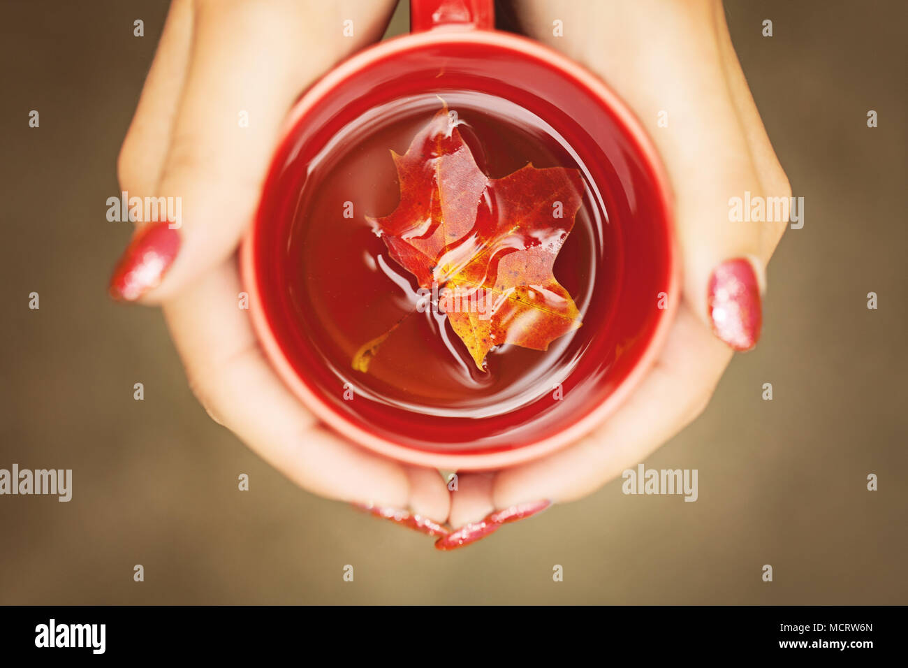 Autumn Leaves and Hot Steaming Cup in Female Hands. Seasonal, Morning Tee, Sunday Relax Concept - Stock Image