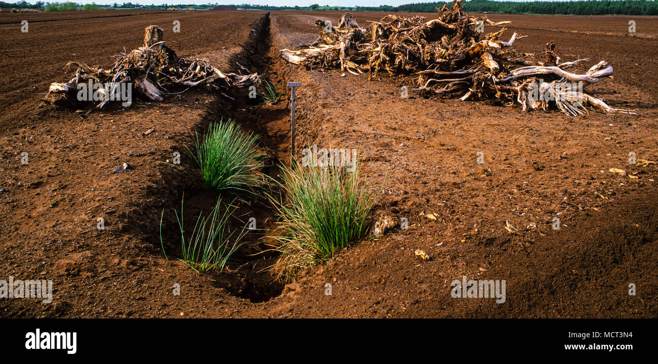 Peat Extraction for UK Market, All Saints Bog and Esker SAC, Offaly, Ireland. - Stock Image