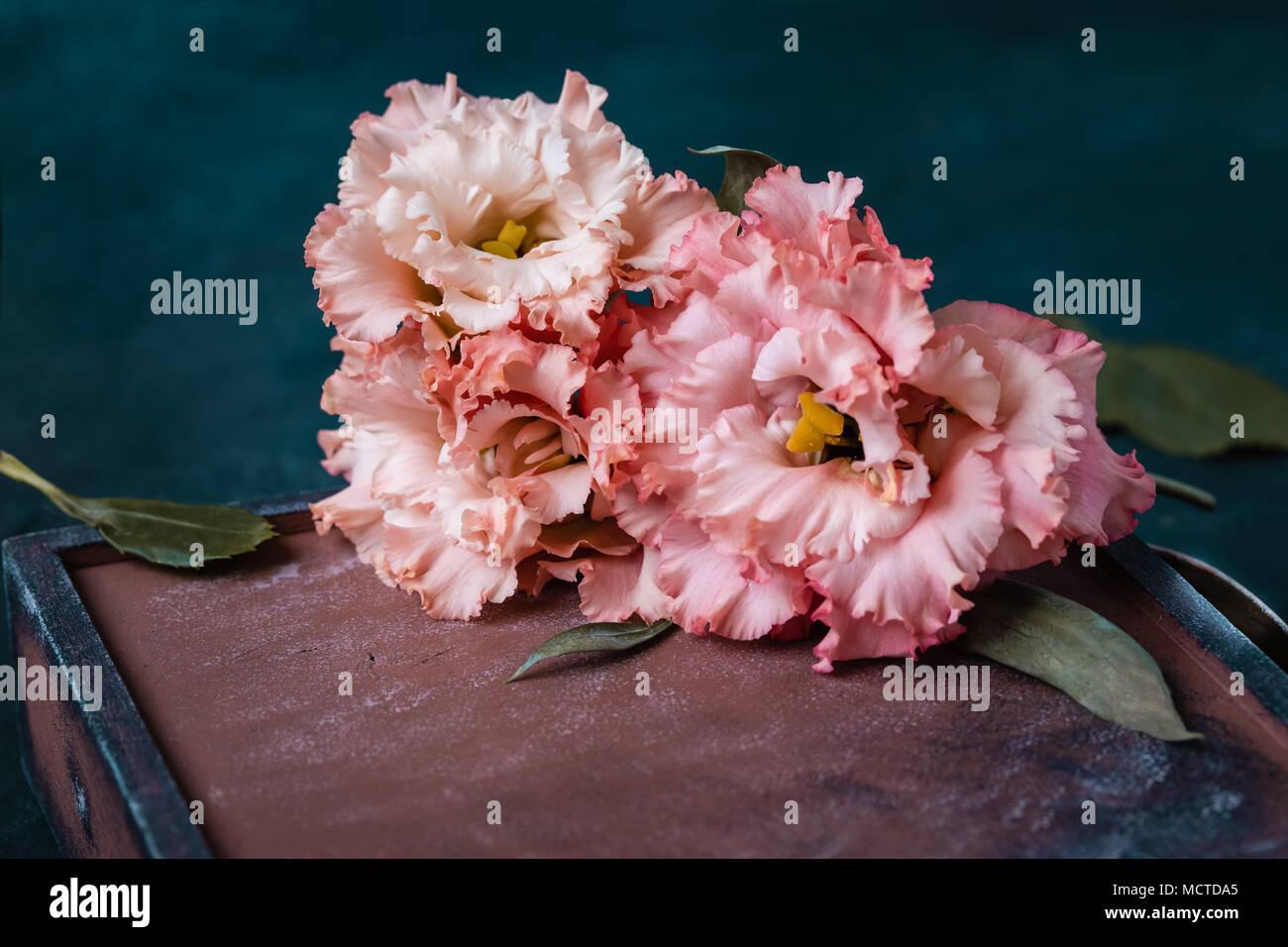 Pink garden carnations in the old box on dark background, postcard ...
