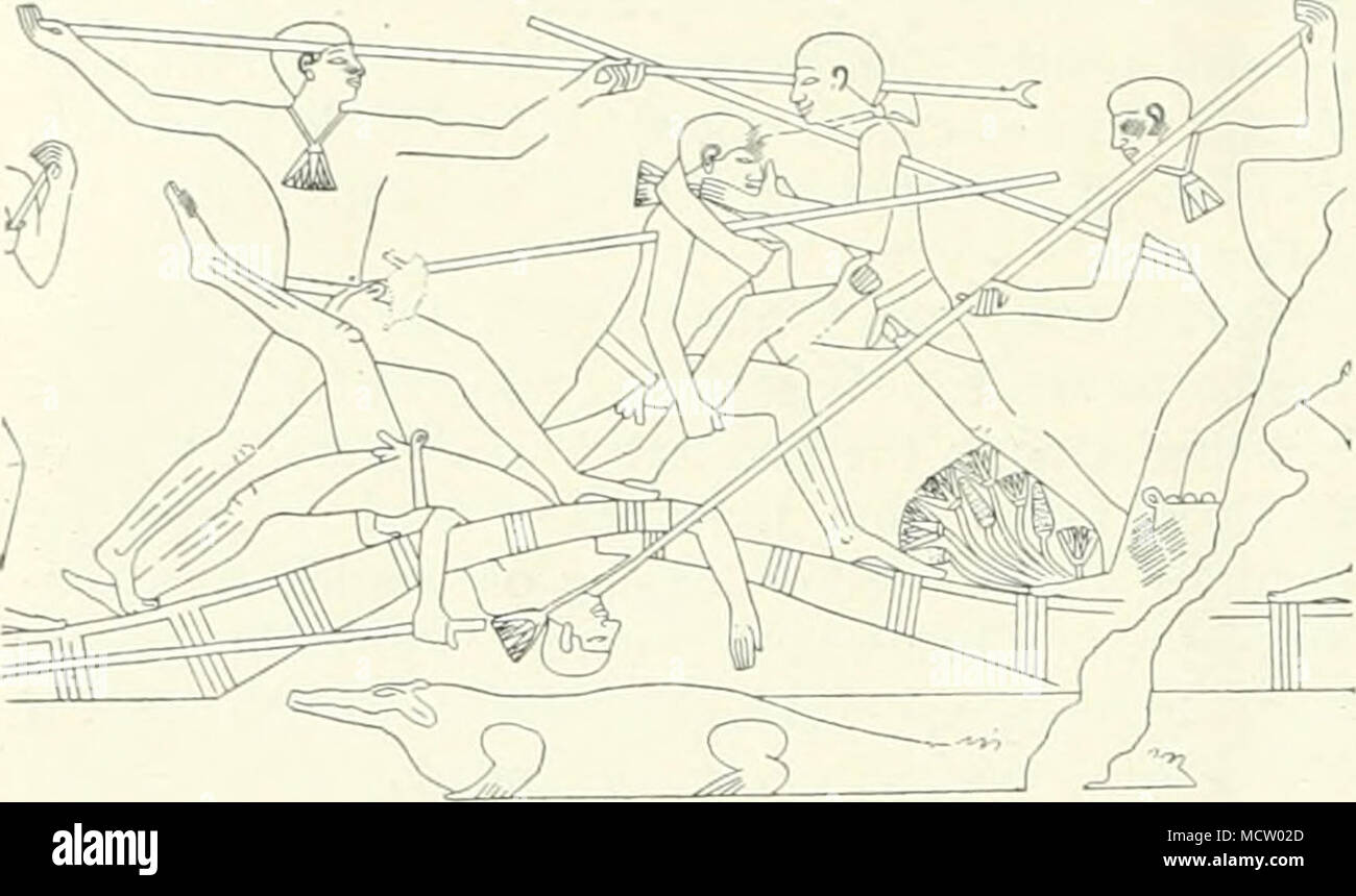 . Fig. 4.—fight BETWEEN TWO BOAT-CREWS. strength, for that he possesses in abundance, and is only too proud and pleased to display it. The famous Italian sculptor Zanelli waxed en- thusiastic over the Meir reliefs, and in particular, I think, over that depicting the fight between two boat- crews (Fig. 4). He delightedly drew my attention to the man who has fallen down, and whom one of the crew of the rival boat is jabbing in the throat with a pimt-pole. The artist, Zanelli pointed out, has most brilUantly caught off the poor fellow's attitude at the ven,' moment after he had tumbled into that  - Stock Image