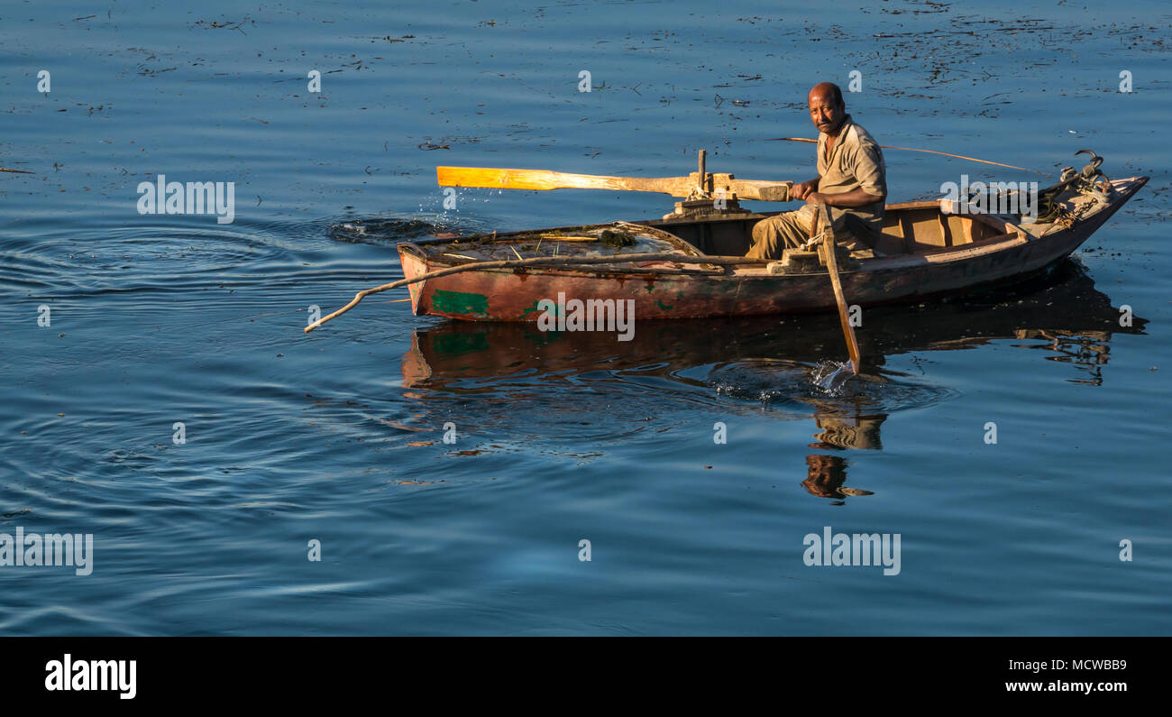 Egyptian man in rowing boat with oars in early morning light, looking at camera, with smooth water reflections, Nile River, Egypt, Africa - Stock Image