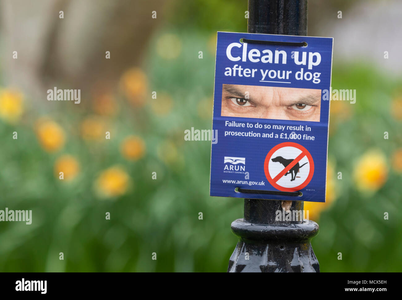 Council warning sign to clean up after your dog does a poo, in Littlehampton, West Sussex, England, UK. - Stock Image