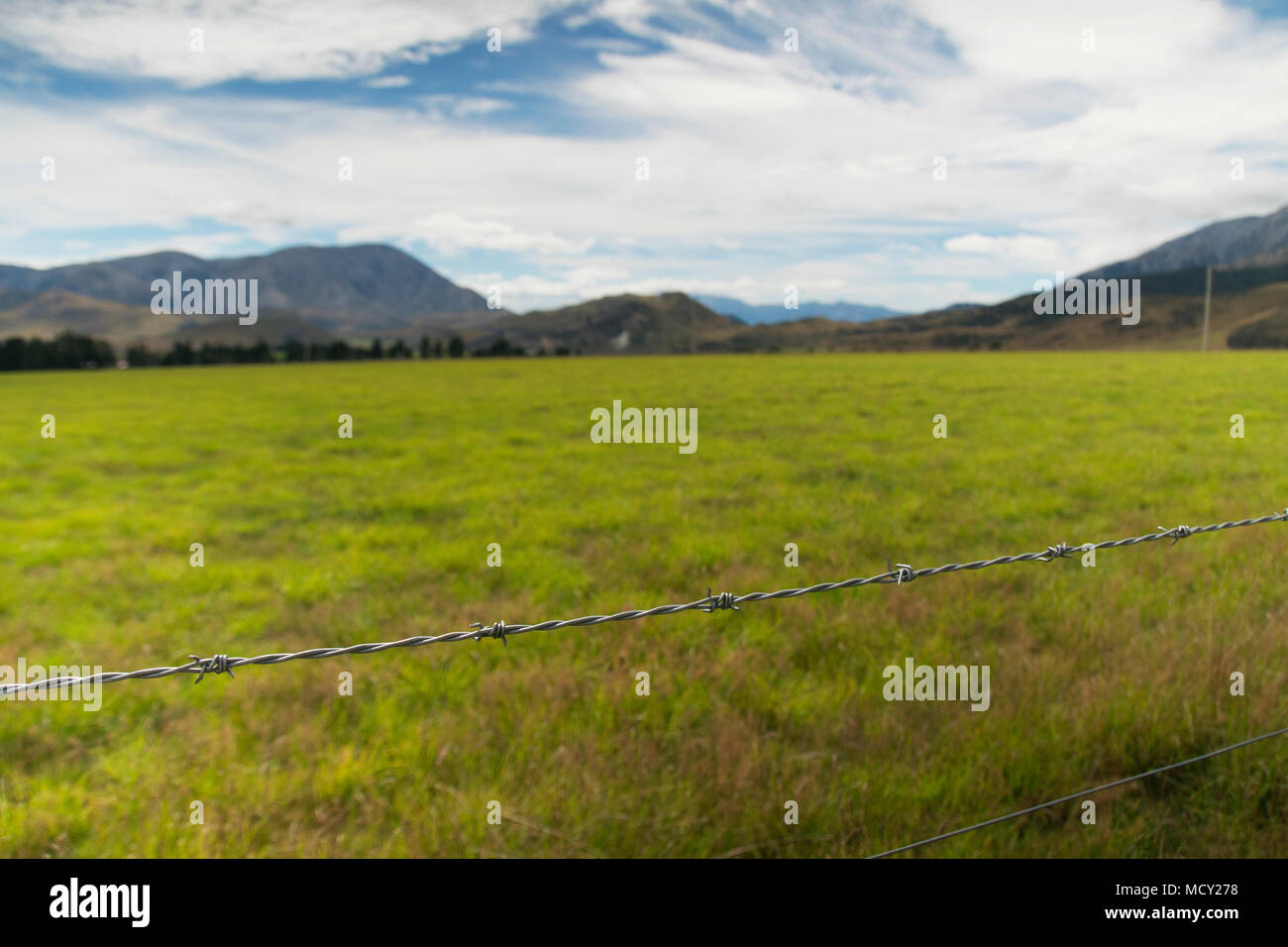 Barbed wire fence around a paddock in Canterbury, South Island of New Zealand - Stock Image