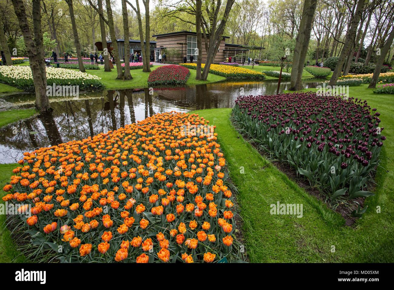 Keukenhof Gardens Stock Photos & Keukenhof Gardens Stock Images - Alamy
