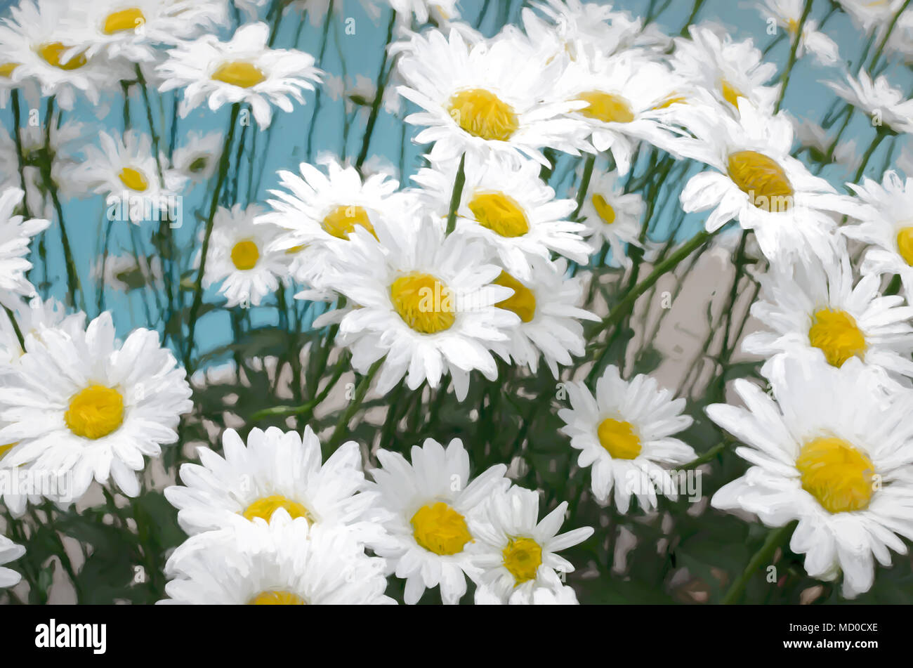 Daisies flowers in painting style stock photo 180104358 alamy daisies flowers in painting style izmirmasajfo