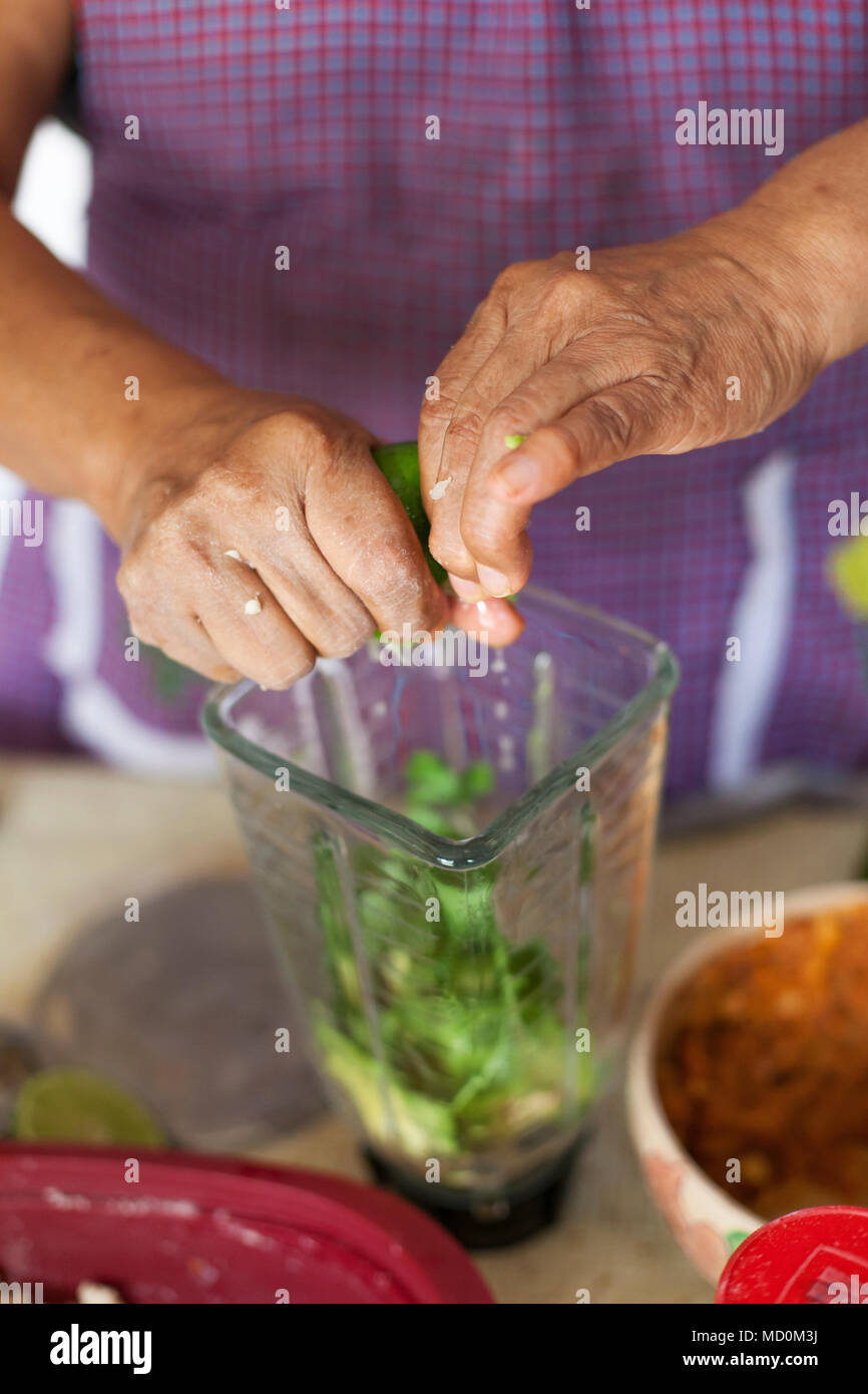 Chef Raquel Patricia Garzon making salsa for molotes (corn-based fritters stuffed with potato and meat) in her kitchen   Oaxaca City, Oaxaca, Mexico - Stock Image