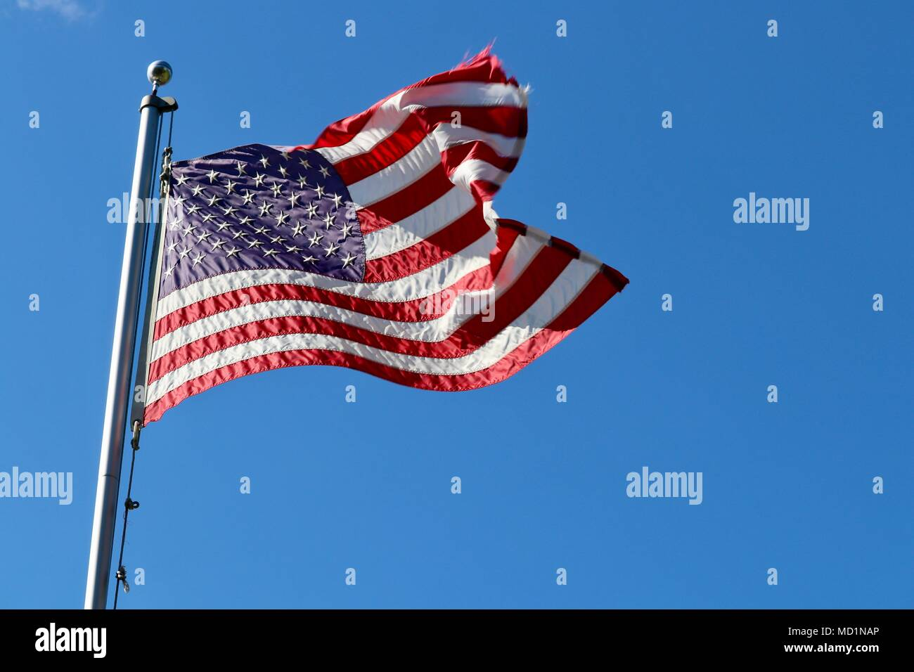 American Flag flying on flagpole at full mast on breezy sunny day isolated against vivid blue sky - Stock Image