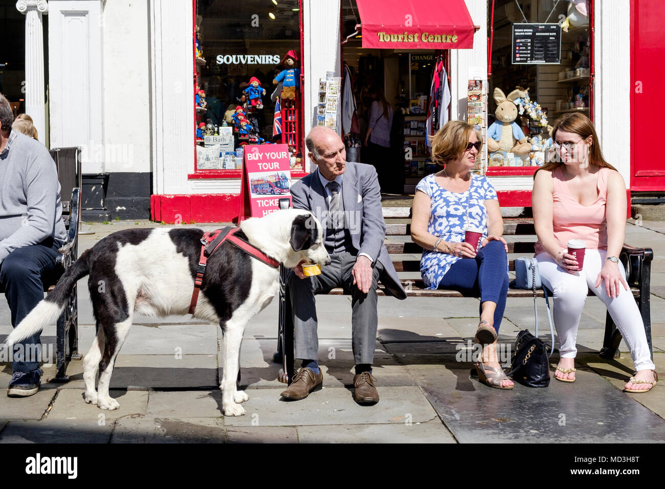 Bath, UK. 18th April, 2018. A dog is pictured as it enjoys a refreshing drink in front of Bath Abbey as forecasters predict that the warm weather will continue and that tomorrow could be the hottest day of the year so far. Credit: lynchpics/Alamy Live News - Stock Image