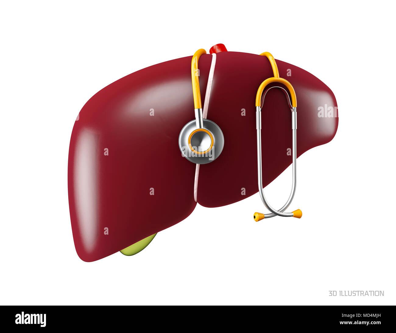 3d Illustration of Human liver anatomy. Human internal organs symbol ...