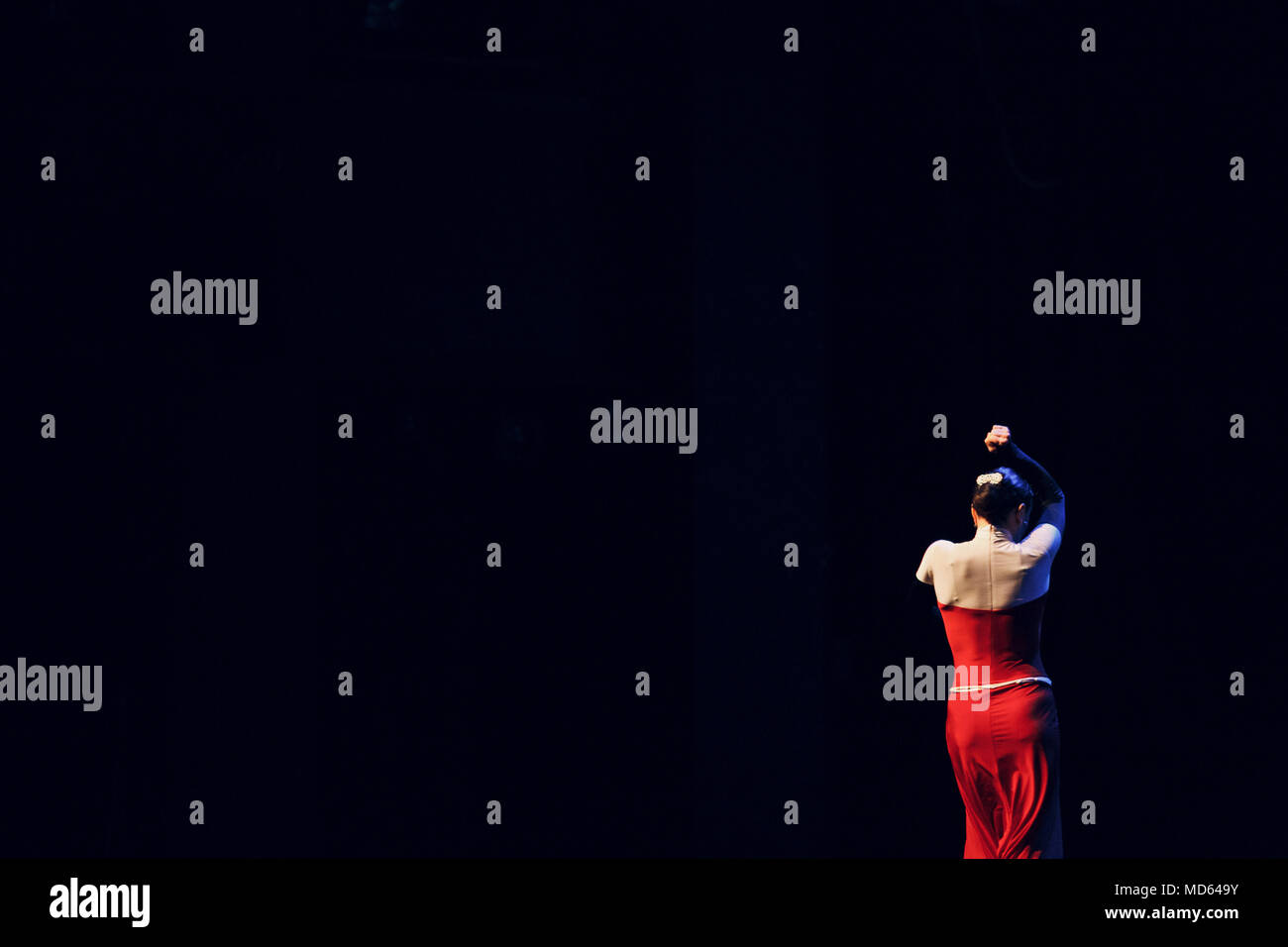 Flamenco. Performance on stage. - Stock Image