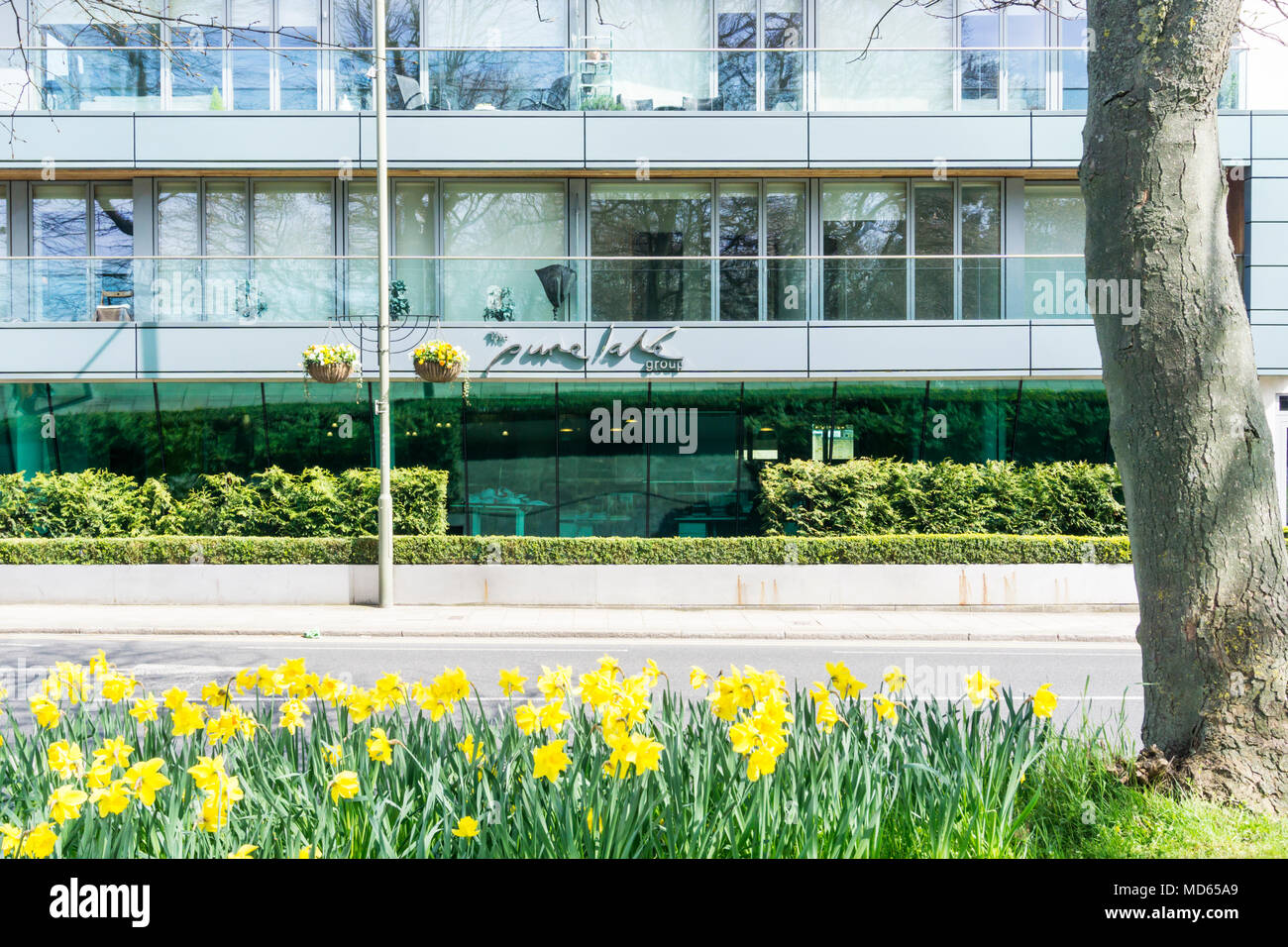 The Bromley HQ of property developers Pure Lake Group. - Stock Image