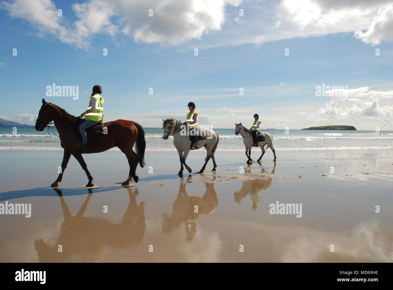 Three Horses, Ponies walking on a beach with riders on the west coast of Ireland - Stock Image